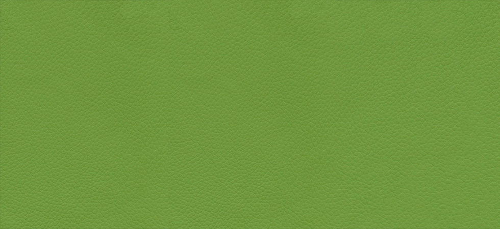 classic-leather-apple-green