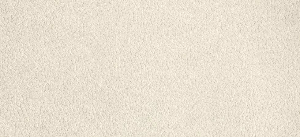 microleather-eggshell